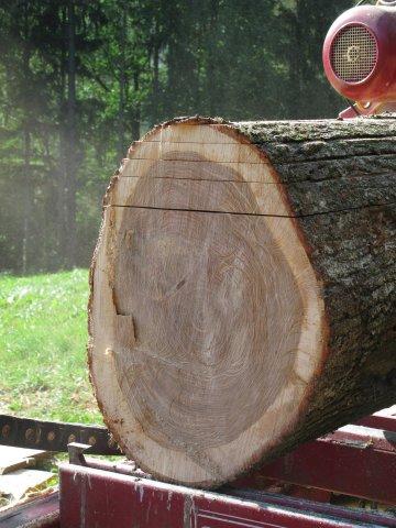 Holzeinschnitt