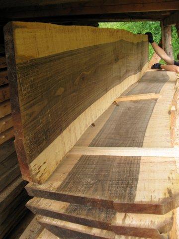 Nußbaum Massivholz